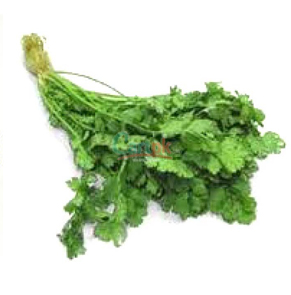 DMC-5119-Fresh-Mint--Pudina-1-Bunch-fresh produce-Fresh-Vegetables-Mint---meridukan.pk